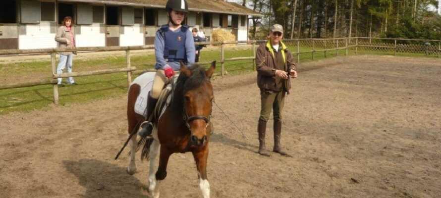 Brunnenhof Lüneburger Heide er en populær rideskole, hvor børn og voksne kan lære at ride.