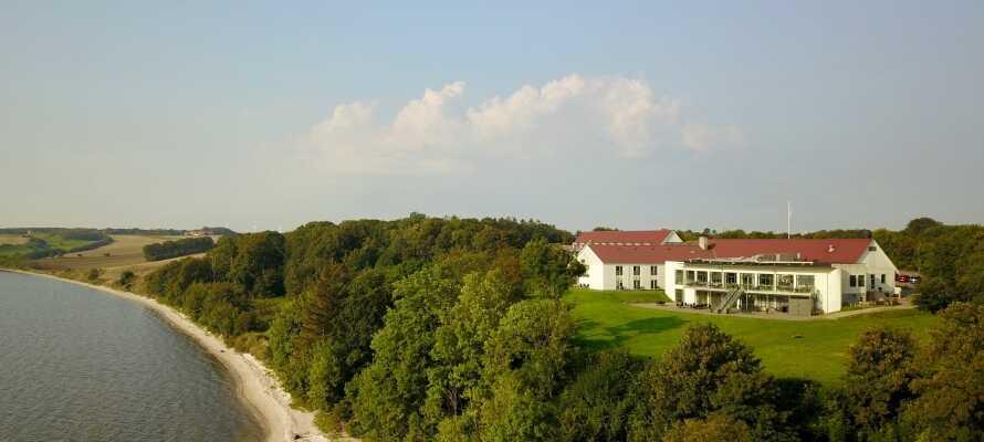 Fra hotellet er der ikke langt ned til Limfjorden, som indbyder til gåture.