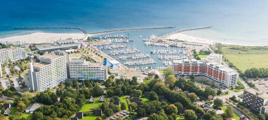 Auf Sie wartet ein unvergesslicher Aufenthalt in diesem 65 Hektar großen Hotelresort direkt an der Ostsee zwischen Flensburg und Kiel.