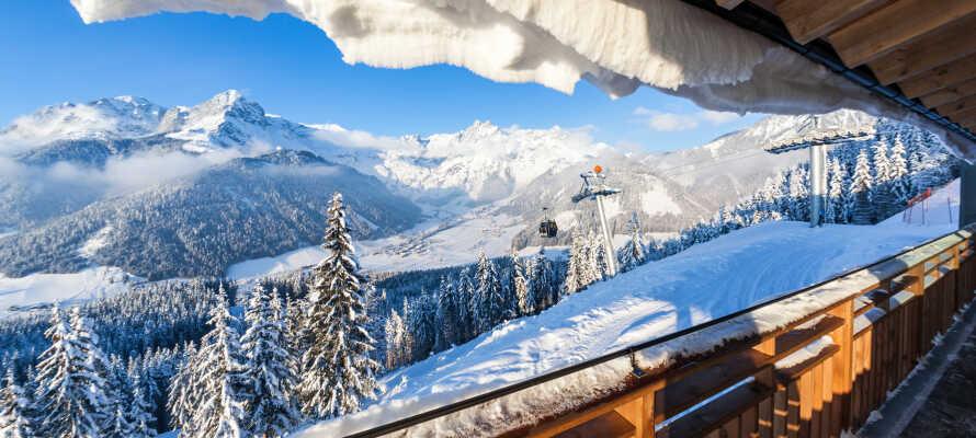 Udsigten til de smukke snebelagte bjerge er enestående.