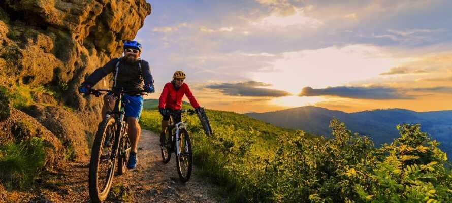 Gastein-området er kendt for den smukke natur og de utallige muligheder for imponerende cykel- og vandreture.