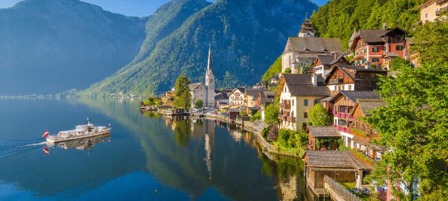 Dra på utflukt, f.eks. til Dachstein-fjellene eller Burg Strechau, eller besøk den idylliske perlen av en by, Hallstatt.