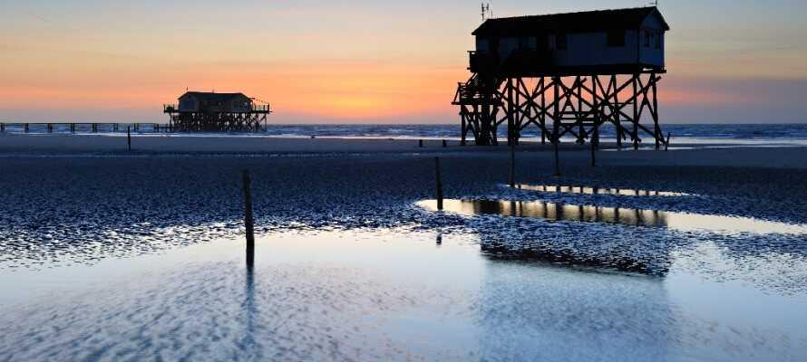 Machen Sie einen Ausflug in Nordfriesland und gehen zum Beispiel am paradiesischen Strand der Ortschaft St. Peter Ording spazieren.