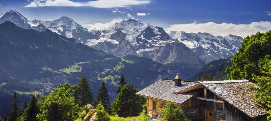 Hotellet ligger mellem søerne, Großsee og Steiersee, hvor der er lagt op til aktiviteter og vandreture i idylliske omgivelser