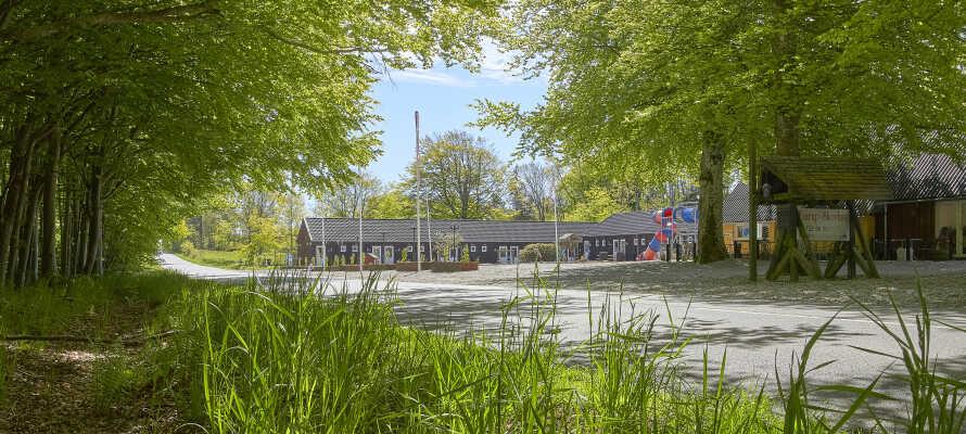 Fårup Skovhus ist perfekt als Ausgangspunkt für einen aufregenden Tag in Vendsyssel.