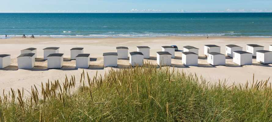 Det er kun 3 km til Saltum Strand, hvor dere kan gå turer i vannkanten og nyte den friske havluften.