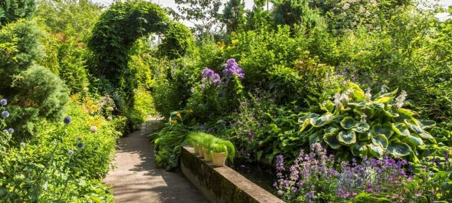 Opplev Anne Justs hage med et antall vakre blomster, planter, trær og busker.