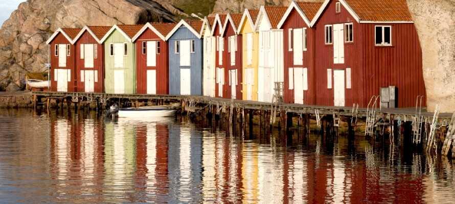 Besök den berömda Smögenbryggan eller Smögens fiskauktion, i den gamla fiskehamnen, ett otroligt populärt sommarresmål.