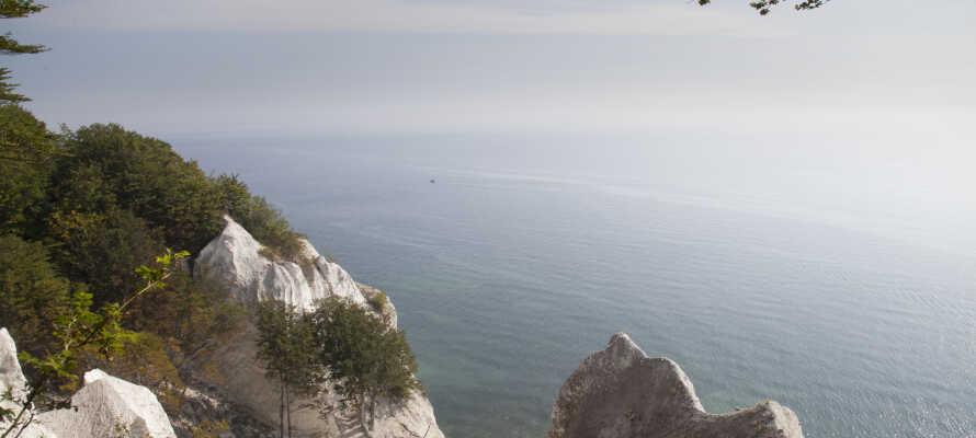 Tag på naturudflugt og se de betagende klipper og flotte natur ved Møns Klint.