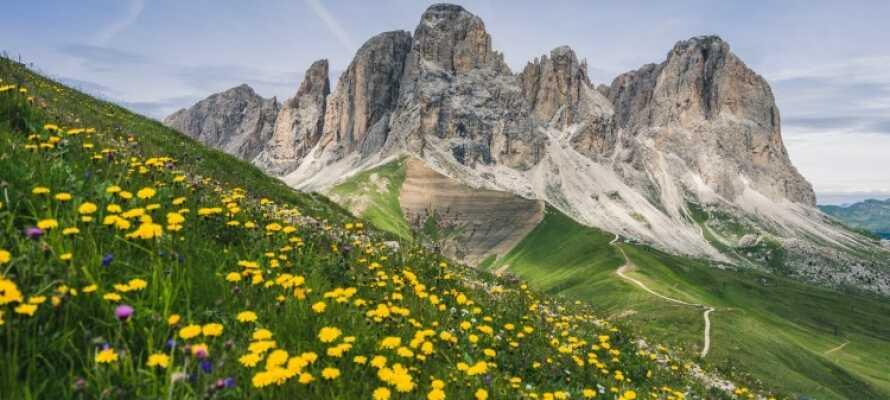 Upplev de imponerande klippformationerna Piramidi di Segonzano.