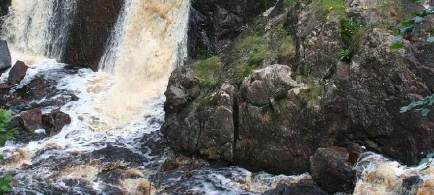 """Se """"Det Danske Vandfald"""" og Kongestenen med en kort tur til det lækre naturområde 'Simlångsdalen'."""