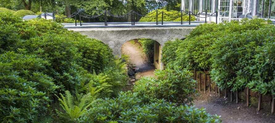 Besøk Norrviken Gardens som i 2006 ble kåret til verdens nest vakreste og Sveriges aller vakreste hage.