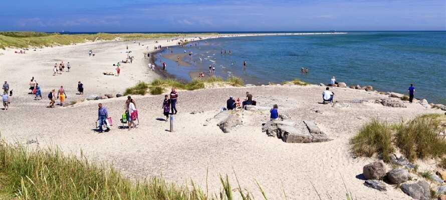 Tag en promenad i vattenbrynet upp och ner för den vackra stranden vid Skagen.