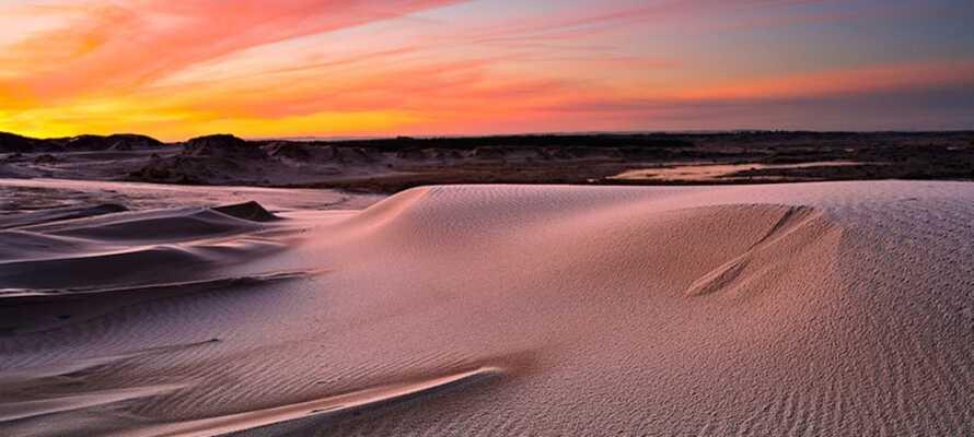 Litt sør for Skagen kan dere oppleve Råbjerg Mile. Den store sanddynen som forflytter seg rundt 15 meter i året mot nordøst.