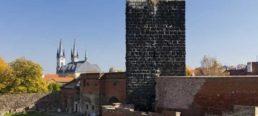 Staden Cheb med sitt gotiska centrum, den stora katedralen och det svarta slottet.