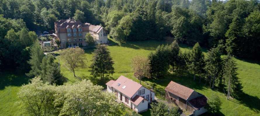 Dette familiedrevne hotel er renoveret i 2020, og tilbyder et skønt ophold med autentisk fransk gæstfrihed, i hjertet af Alsace.