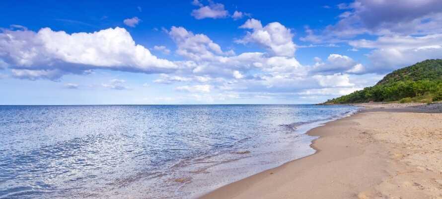 Skåne er kendt for sin smukke natur, oplagt til både en aktiv ferie og en daseferie på stranden.