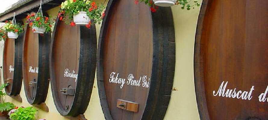 Alsace er kendt for sine mange velsmagende vine. Prøv de gode lokale vine på en af de mange restauranter.