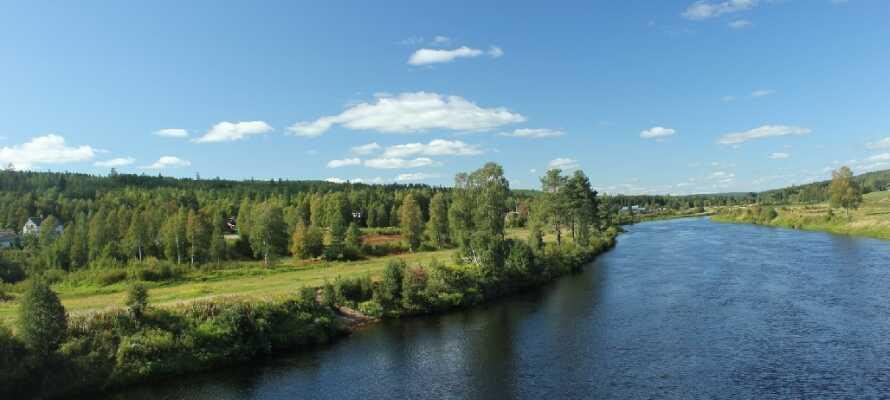 Også om sommeren er Sälen nydelig. Nyt den frodige naturen.