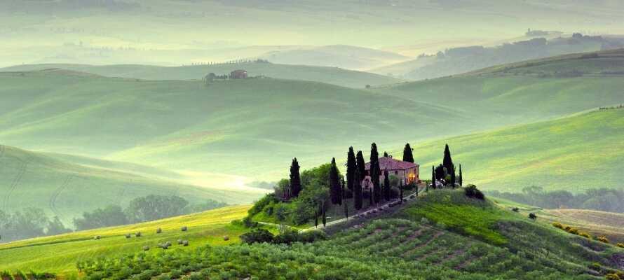 Kom til Toscana med sitt fantastiske landskap, og sine hyggelige byer.
