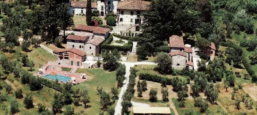 Besøg olivengården Villa Stabbia, som eies av danske Tine og hennes italienske mann.