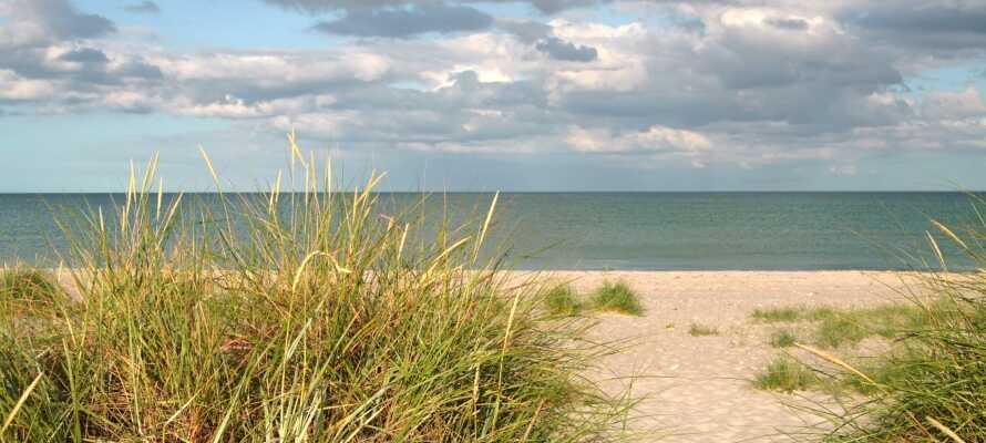Grenå Strand ligger inte långt från hotellet och här kan hela familjen hoppa i vattnet.
