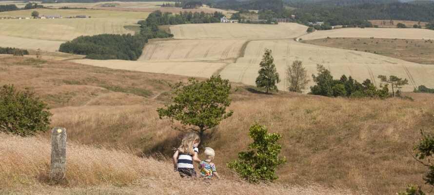 Åk på utflykt till de natursköna omgivningarna i Mols Bjerge.