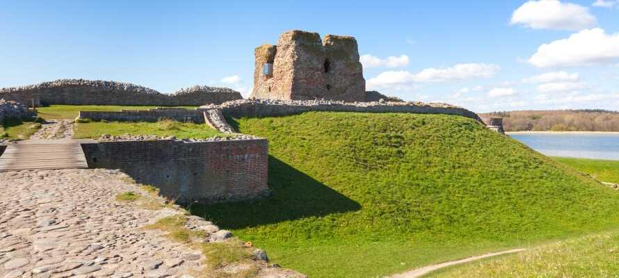 Slottsruinen ligger like ved Kalø vik hvor dere kan se helt til Århus på en klar dag.