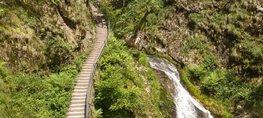 In der Stadt Oppenau im Schwarzwald finden Sie die schönen Wasserfälle Allerheiligen, die bis ins 19. Jahrhundert versteckt lagen.