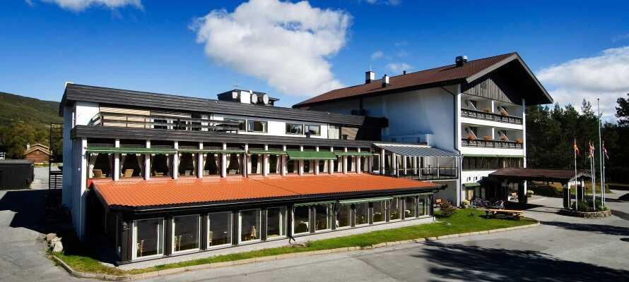 Området omkring hotellet er fyldt med spændende aktiviteter for hele familien, hele året rundt.