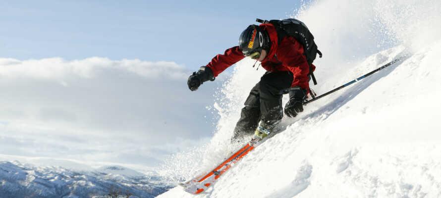 De smukke skiløjper byder på masser af sne og en smuk natur.  Der er også  masser af aktiviteter i området,