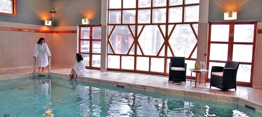 Hotellet har et flott innendørsbasseng med utsikt utover furuskogen.