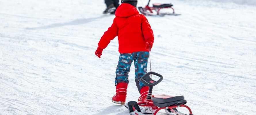 Om vinteren kan hele familien nyde godt af skiområdet, Mullsjö Alpin, som nærmest ligger lige om hjørnet fra hotellet!