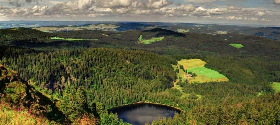 Hotel Ehrich ligger i det vakre og meget populære området Schwarzwald, som tilbyr et hav av grønne omgivelser.