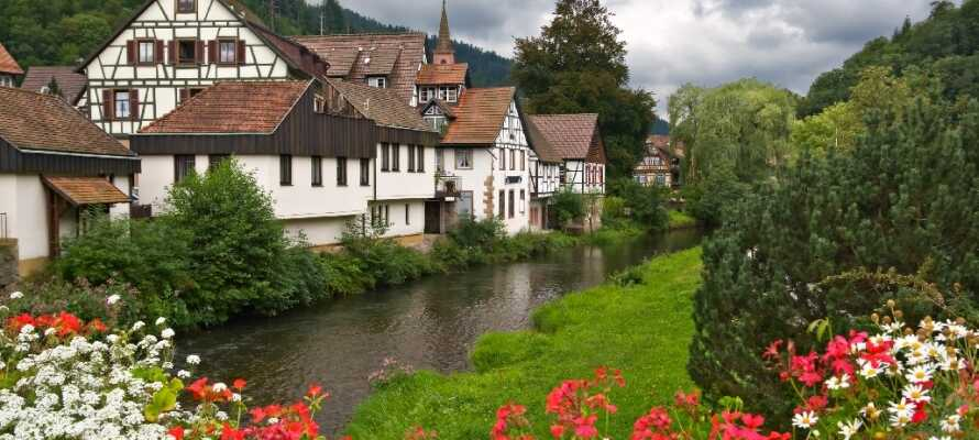 Bruk en dag eller to på å kjøre ut i Schwarzwalds idylliske natur, hvor dere vil bli møtt av fine små landsbyer med massevis av sjarm.