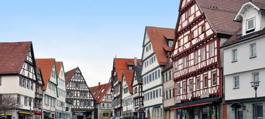 Leonberg er en af de ældste byer i Baden-Württemberg og under opholdet er det et must at besøge byens palads.