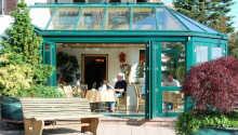 Hotellet tilbyr en hyggelig vinterhage og terrasse, hvor dere kan slappe av og nyte en forfriskning, hvis været tillater det.