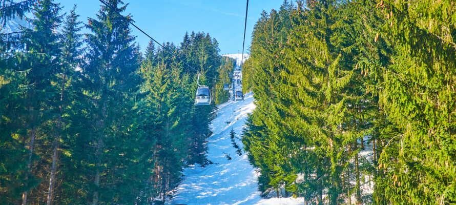 Tag en tur med svævebanen og oplev det flotte landskskab og udsigten over Zwieselalm bjergskråning.