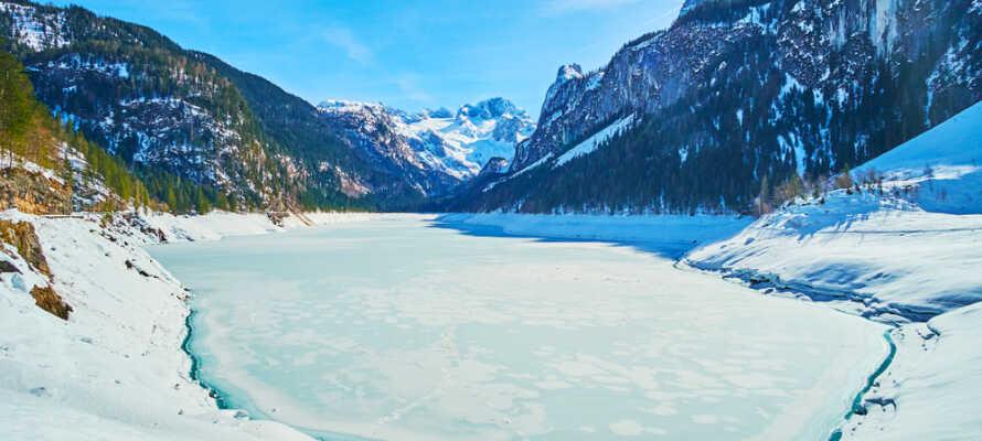 Området byder på flotte vinteroplevelser; oplev den smukke Gosausee.