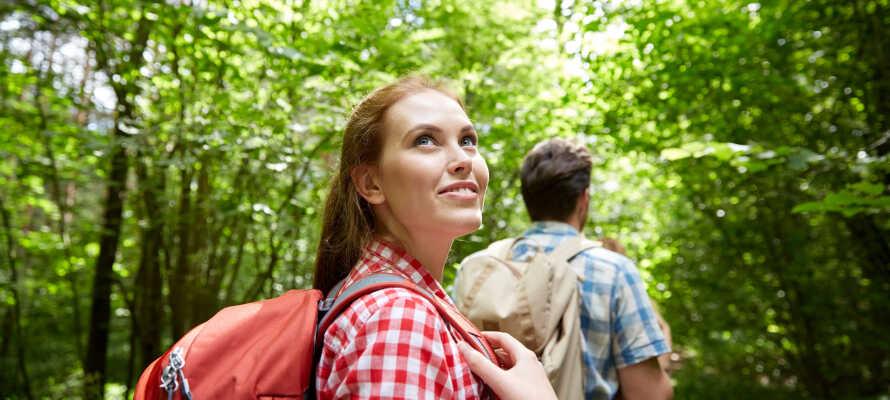 Her har dere et bra utgangspunkt for aktiv ferie med både vandre- og sykkelturer samt skiopplevelser.