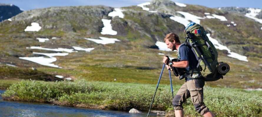 Der er gode forhold når det kommer til vandreture i Ål ved Hallingdal, så husk at få vandrestøvlerne med.