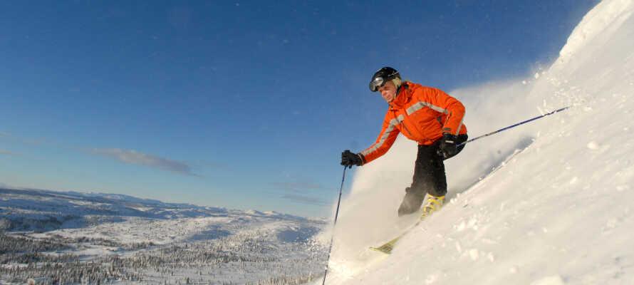 Njut av en härlig vintersemester med boende på Thon Hotel Hallingdal där ni kan åka skidor i backarna i Ål, njuta av solen och uppleva den vackra naturen.