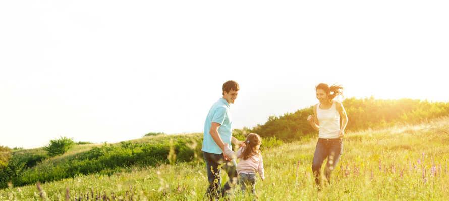 Udforsk naturen omkring Sidsjön eller ved Norra Berget, som er et af regionens mest populære udflugtsmål.