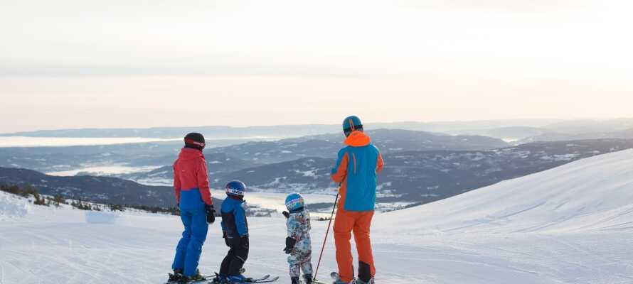 Backarna ligger strax utanför hotellet och här har hela familjen gott om möjligheter att njuta av vintern.
