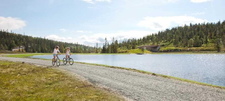 Det natursköna området är perfekt för vandring och cykling samt för segling på sjön.
