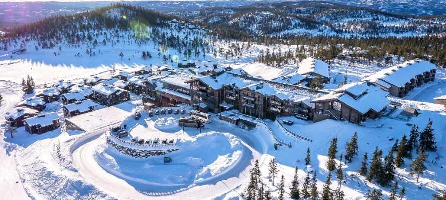 Wenn Sie sich im Winter nach Schnee sehnen, machen Sie einen Norwegentrip.