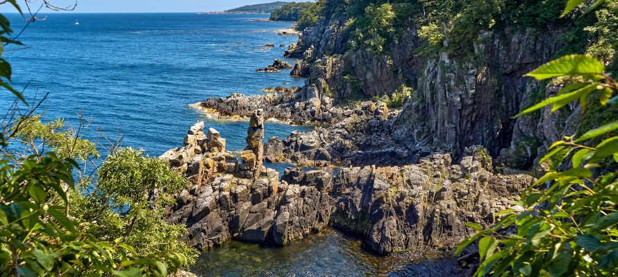 Se Helligdomsklipperne, der er mere end 1.700 millioner år gamle, hvor bl.a. den bornholmske grotteedderkop huserer.
