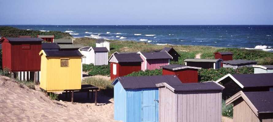 Nyd sommeren på den populære Tisvildeleje Strand, som ligger kun 18 km fra hotellet