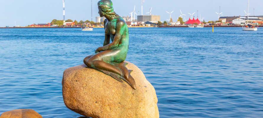 Utforska Köpenhamns sevärdheter, däribland Lille Havfrue som ni finner en kort promenad från hotellet.