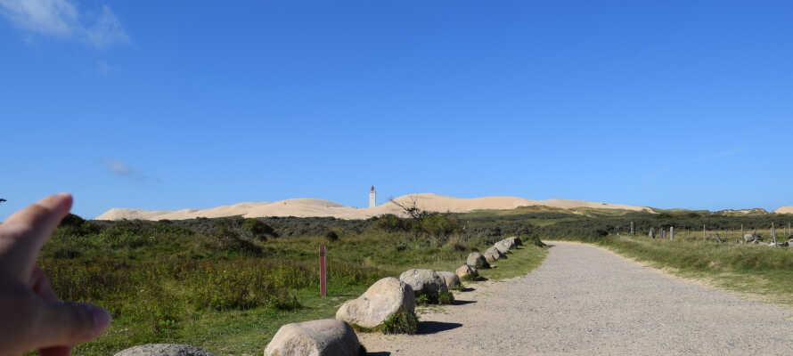 Besuchen Sie den Rubjerg Knude Leuchttur, der im Jahre 2019 rund 70 Meter versetzt wurde.